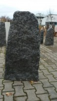 Ambassador Black AB7098