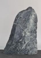 Tauerngrün  TG15789