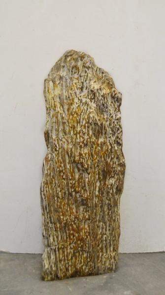 Versteinertes Holz HZ16665